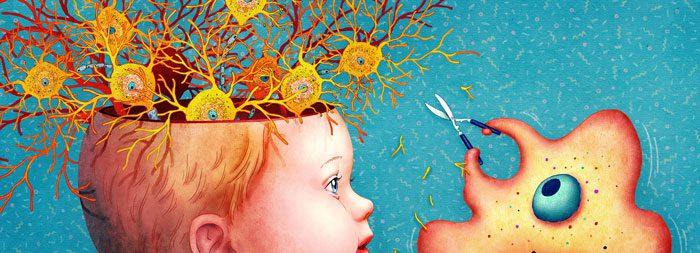 وجود بیش از اندازه سیناپس برخلاف فرآیند نوسازی مغز است