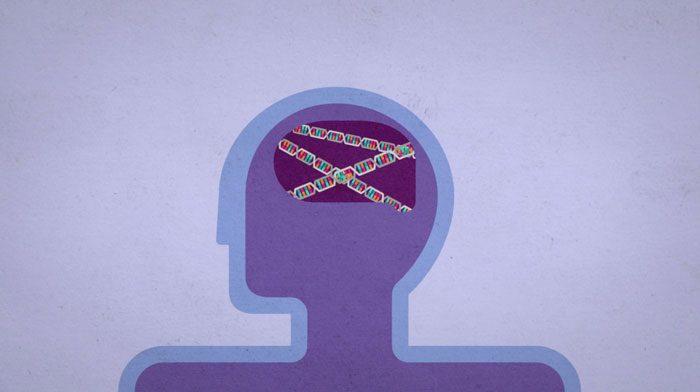 انواع اختلال اوتیسم - سندروم رت