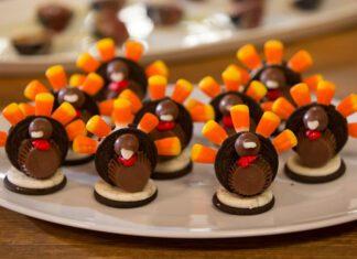 میان وعده ای خوشمزه و سبک - شکلات بوقلمونی