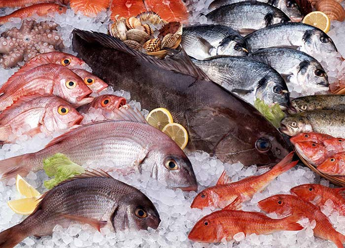 ماهیهایی که میزان جیوه در آنها بالا است