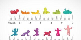 جدول رشد تولد تا یک سالگی کودک
