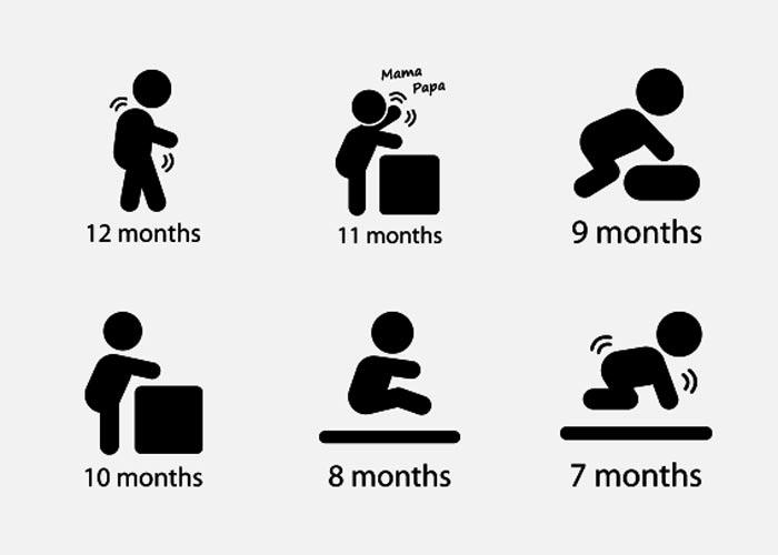 جدول زمانی رشد کودک هشت تا دوازده ماهگی