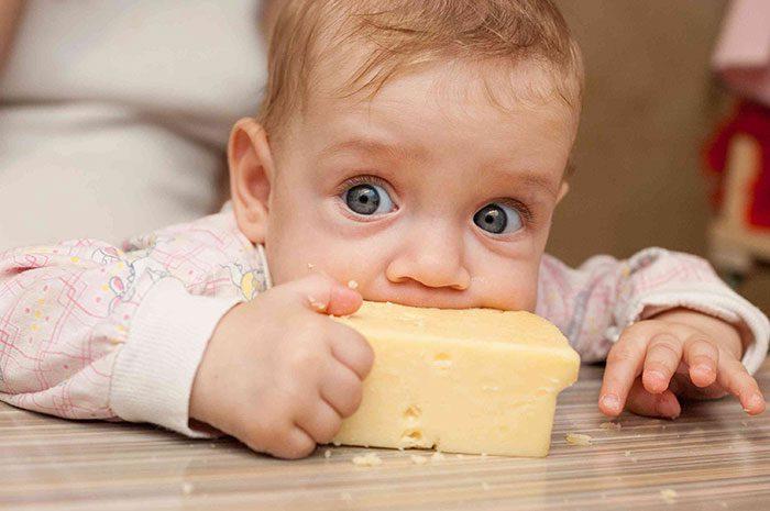 دادن پنیر به کودک