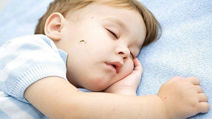جلوگیری از گزیده شدن کودک توسط حشرات