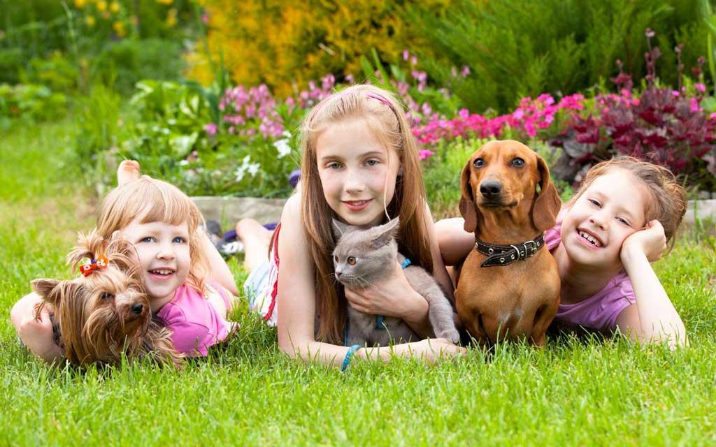 آموزش رفتار با حیوانات به کودک