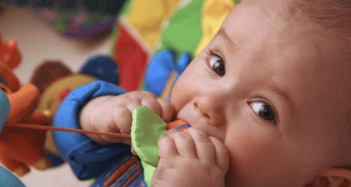 زندگی با کودک پانزده هفته ای