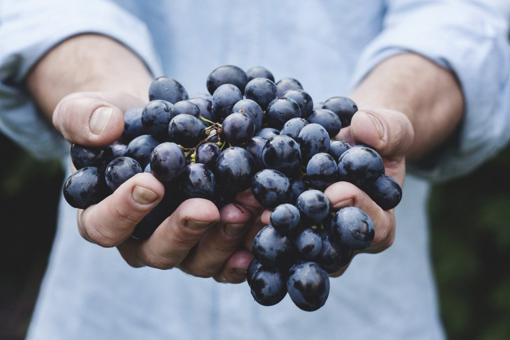 ارزش غذایی انگور