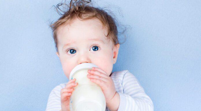 دادن شیر گاو به نوزاد