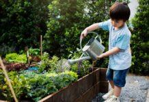 زندگی روزمره در رشد کودک